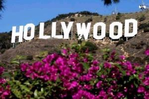 Hollywood Programme